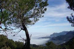 Der Trockenmauerweg GR 221 – Der Fernwanderweg in Tramuntana, Mallorca