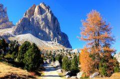 WANDERN || Südtirol: Genusswandern | Essen in den besten Hütten