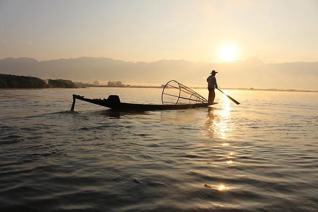omega-3-fettsäuren | Fisch nachhaltig konsumieren