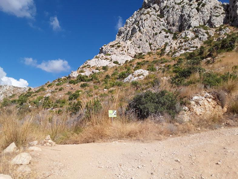 Trockenmauerweg GR 221 | Hier geht's lang | Abzweigung hinter La Trapa links
