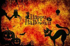 KIDS || Halloween: Deko basteln und schaurige Rezepte zum selber machen