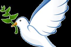 GESUNDHEIT || Affirmation für Frieden, Liebe & Vertrauen